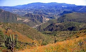 Sierra Madre Occidental mountain CHIHUAHUA